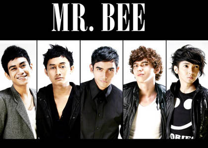 Mr. Bee