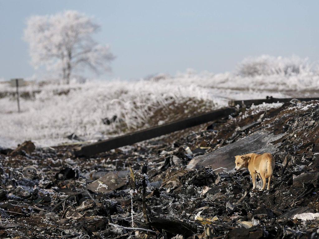Rusia Veto Resolusi DK PBB Soal Pembentukan Pengadilan Tragedi MH17