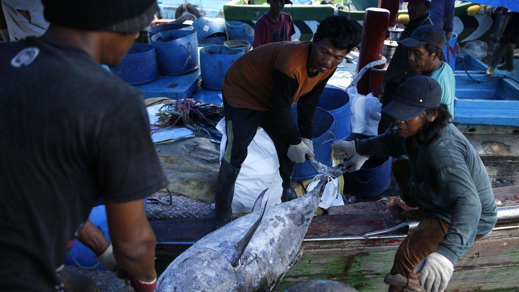 KKP Targetkan 6,3 Juta Ton Ikan Tangkap Tahun ini