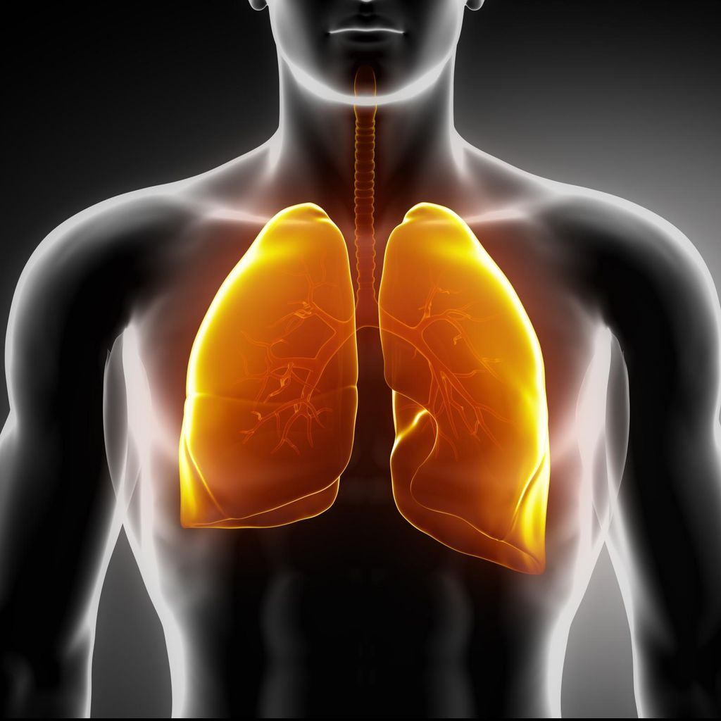 4 Orang Meninggal di New York City Akibat Wabah Pneumonia Langka