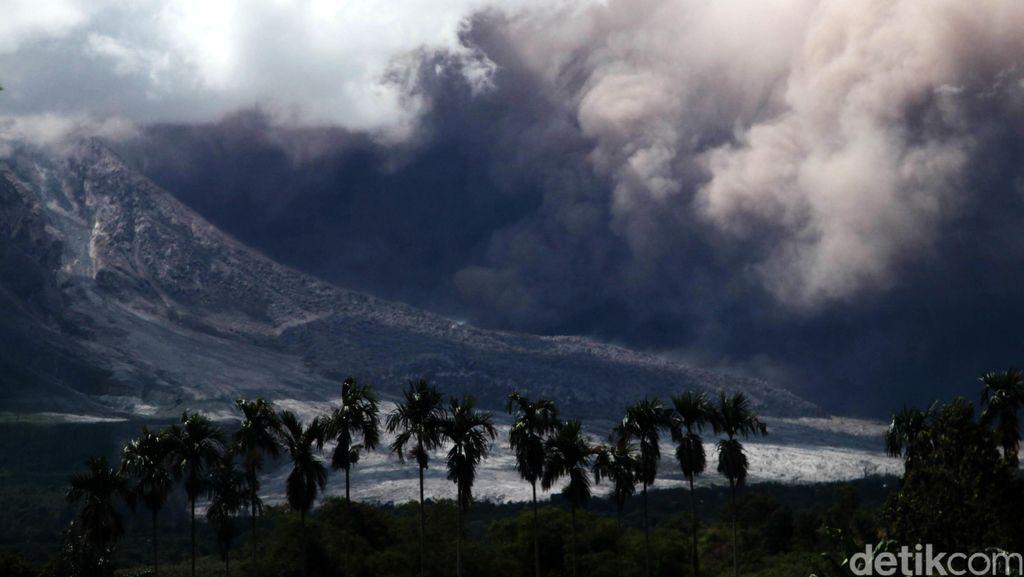 Asyik, Pengungsi Gunung Sinabung Dapat Lahan Pertanian 0,5 Ha