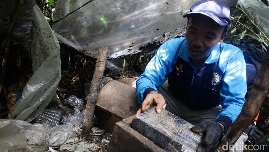 BNN Temukan Alat Pres Ganja dalam Lubang di Pegunungan Gayo Lues