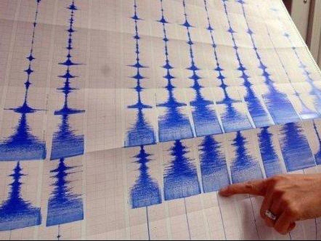 China Gunakan Hewan Untuk Prediksi Gempa Bumi