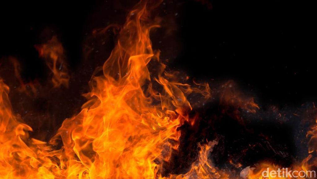 Alang-alang di Pinggir Tol KM 51 Cikampek Arah Jakarta Terbakar