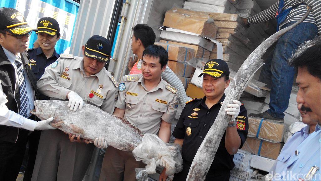 Di Indonesia, Ada Pabrik Sandal dan Toko HP Ekspor Tuna atau Kerapu