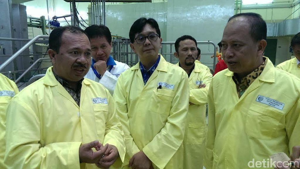 Kemristek Dikti Akan Bangun PLTN Riset Rp 1,8 T di Serpong