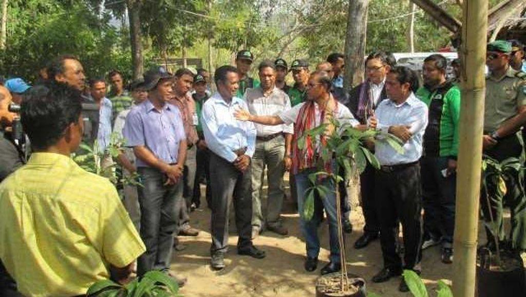 Presiden Timor Leste Apresiasi Bantuan 75 Ribu Bibit Pohon dari Indonesia