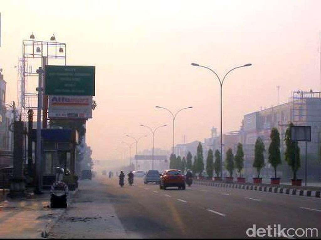 Sayembara Cegah Kebakaran Hutan di Riau, Desa Tanpa Api Diganjar Rp 100 Juta