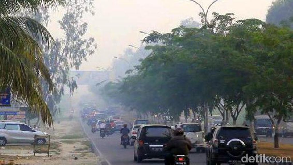 2 Pesawat Tak Bisa Mendarat di Pekanbaru karena Gangguan Asap