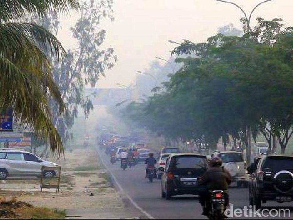 Luas Lahan Terbakar di Riau Mencapai 1.246 Hektare