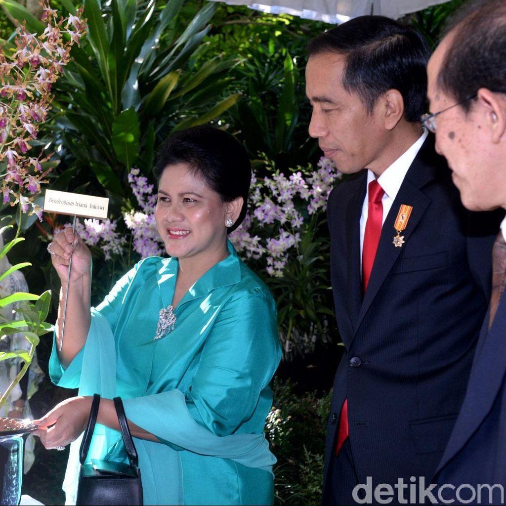 Penampakan Anggrek Iriana Jokowi yang Diresmikan di Singapura