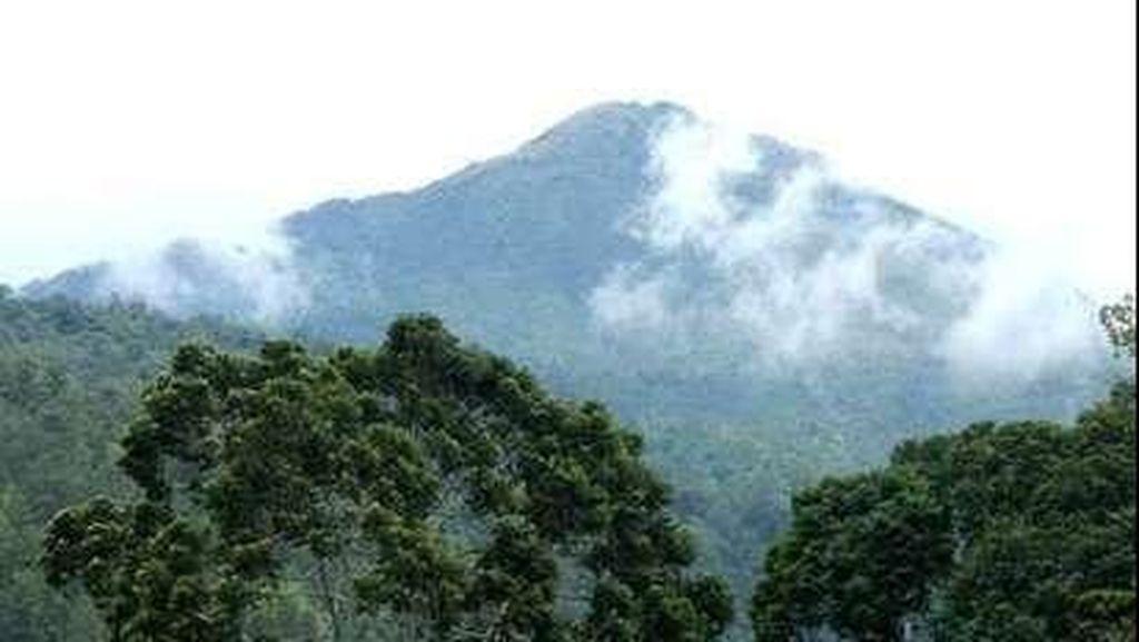 Kebakaran Hutan Gunung Lawu Semakin Meluas