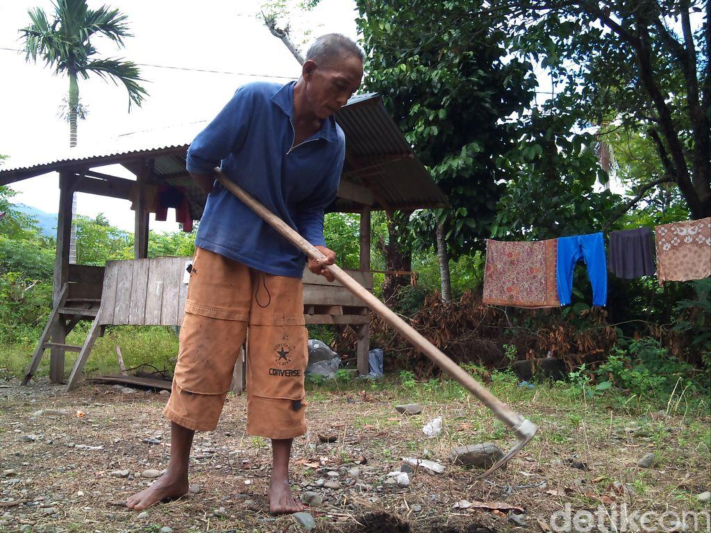 Kesederhanaan Zainal, Penyandang Disabilitas Lulusan PTN yang Jadi Petani