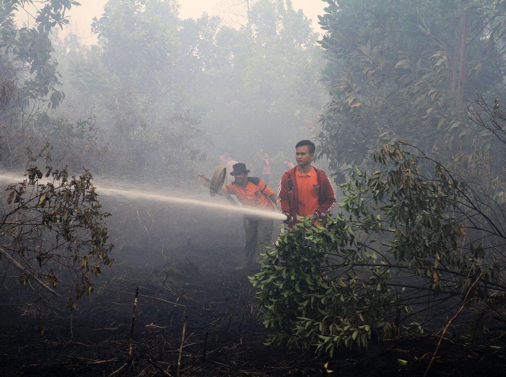 Aturan Baru, Indonesia Bisa Didenda karena Asap Kebakaran Hutan