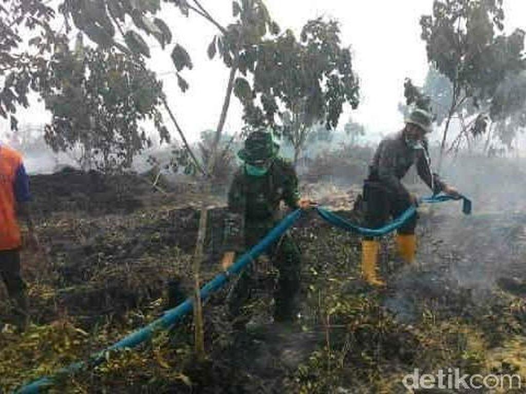Kebakaran Ribuan Hektare Hutan di Sumsel, Kardomo dan Ali Dibui 1 Tahun
