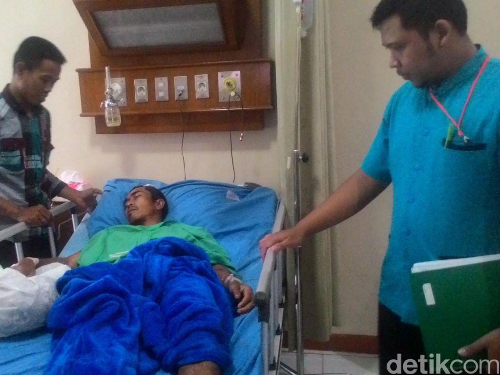 Babi Hutan yang Amuk Pasutri di Bogor Ternyata sedang Dikejar Pemburu