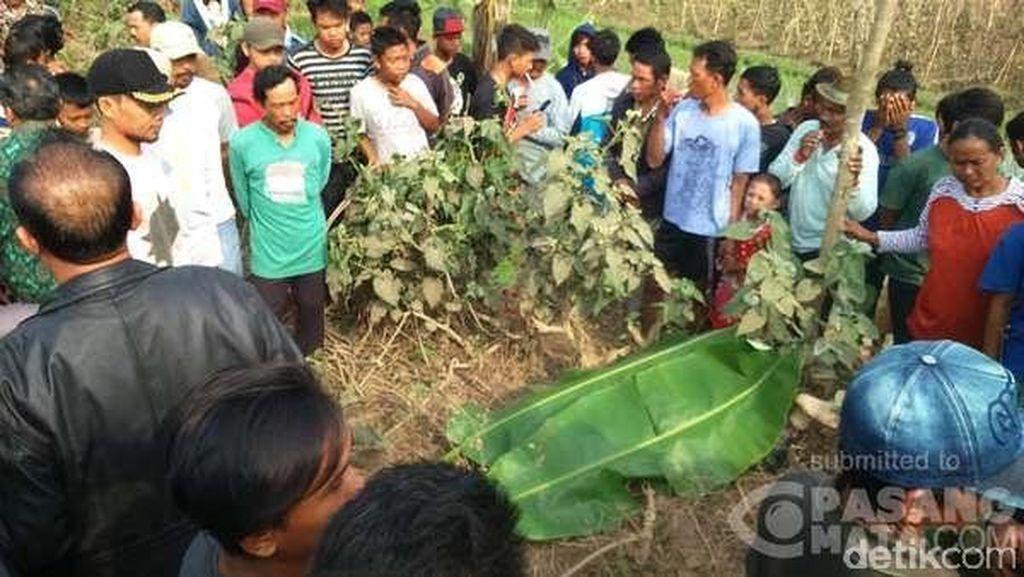 Warga Temukan Mayat Wanita Tanpa Identitas di Cilamaya, Karawang