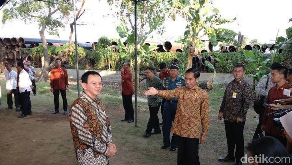 Reunian, Ahok dan Jokowi Bagi-bagi Sembako di Cilincing