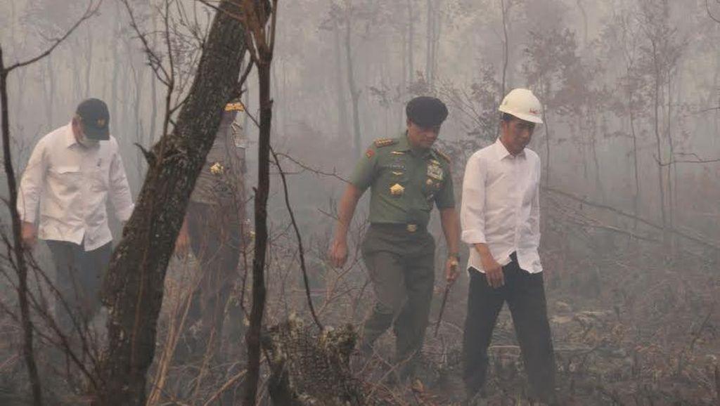 Tiga Hal Pemicu Inpres Kebakaran Hutan Tidak Efektif