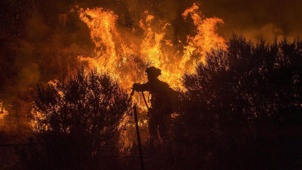 Lebih dari 1.400 Rumah Hangus Akibat Kebakaran Hutan di California