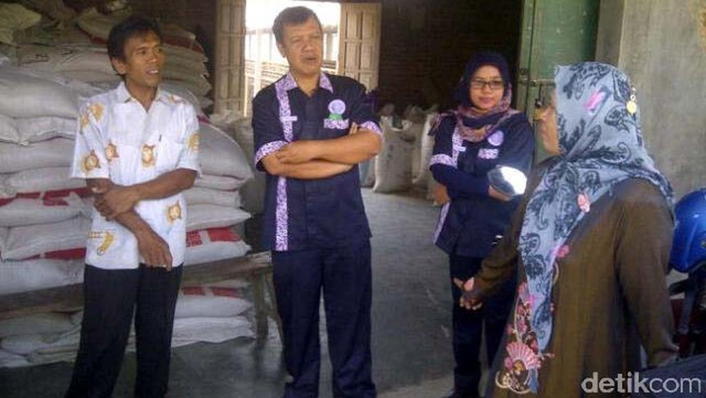 Terapkan Biosekuriti, Penghasilan Peternak Ayam di Kulonprogo Meningkat