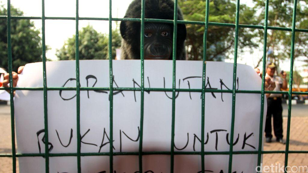 Jual Beli Satwa Dilindungi, Ramadhani Dihukum 2 Tahun Penjara