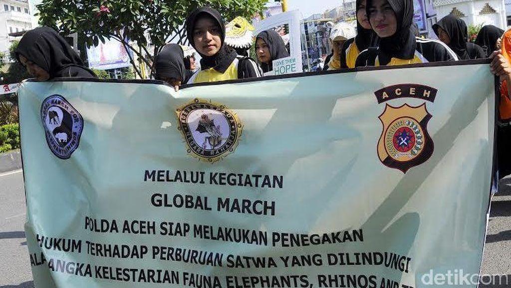 Kenang Yongki, Polwan Cantik di Aceh Kampanye Lawan Perdagangan Satwa