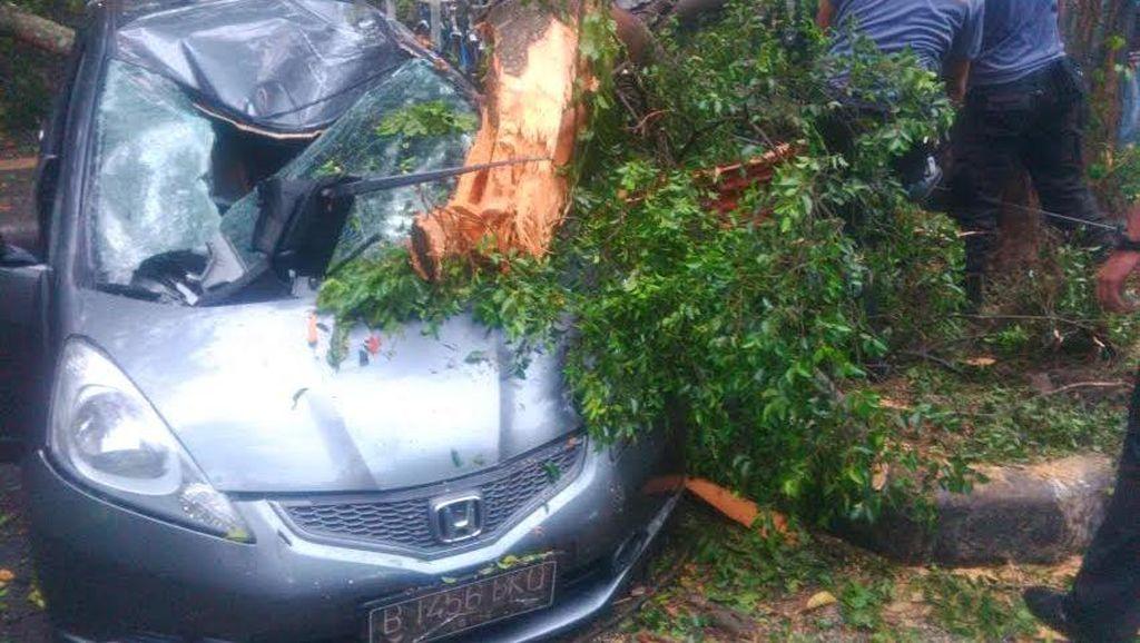 Tangis dan Sedih Mahasiwi Pemilik Mobil yang Tertimpa Pohon di Depan ITB