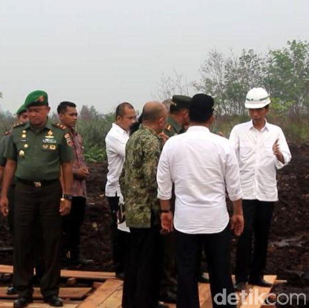 Mentri LHK: 1,7 juta Hektare Hutan dan Lahan Indonesia Terbakar