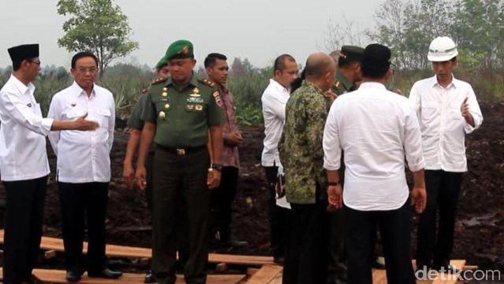 Menteri LHK: 1,7 Juta Hektare Hutan dan Lahan Indonesia Terbakar