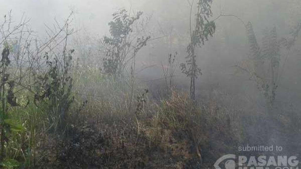 Lahan di Belakang Kampus Haluoleo Terbakar, Aktivitas Belajar Terganggu Asap