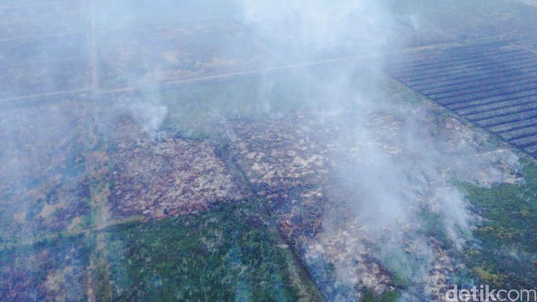 Pansus Kabut Asap Penting untuk Ungkap Mafia Pembakar Hutan