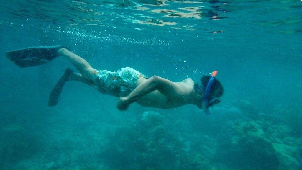 Keajaiban Ora, Surga Bawah Laut Tersembunyi di Maluku