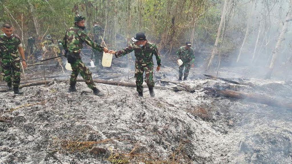 Cegah Kebakaran Lahan di Riau, Kodam I BB Bentuk Tenaga Pembina Desa