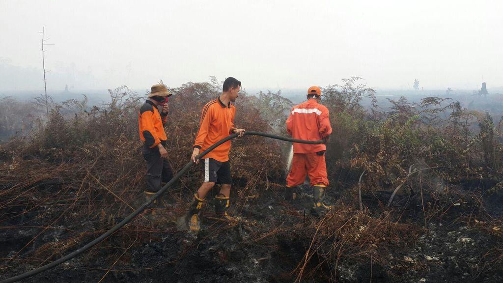 Badan Restorasi Gambut Akan Jadi Jualan Indonesia di KTT Iklim