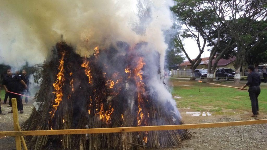 Kapolri Pimpin Pembakaran 1,7 Ton Ganja Kering di Mapolda Aceh
