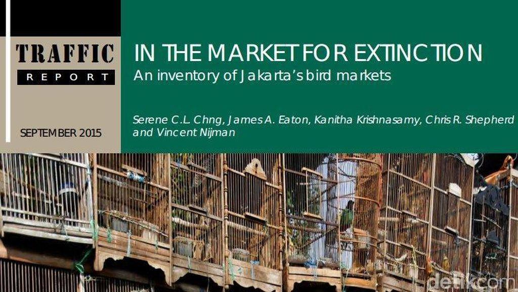 Survei Traffic: 3 Pasar Burung DKI Jual 19 Ribu Ekor, 8 Spesies Terancam