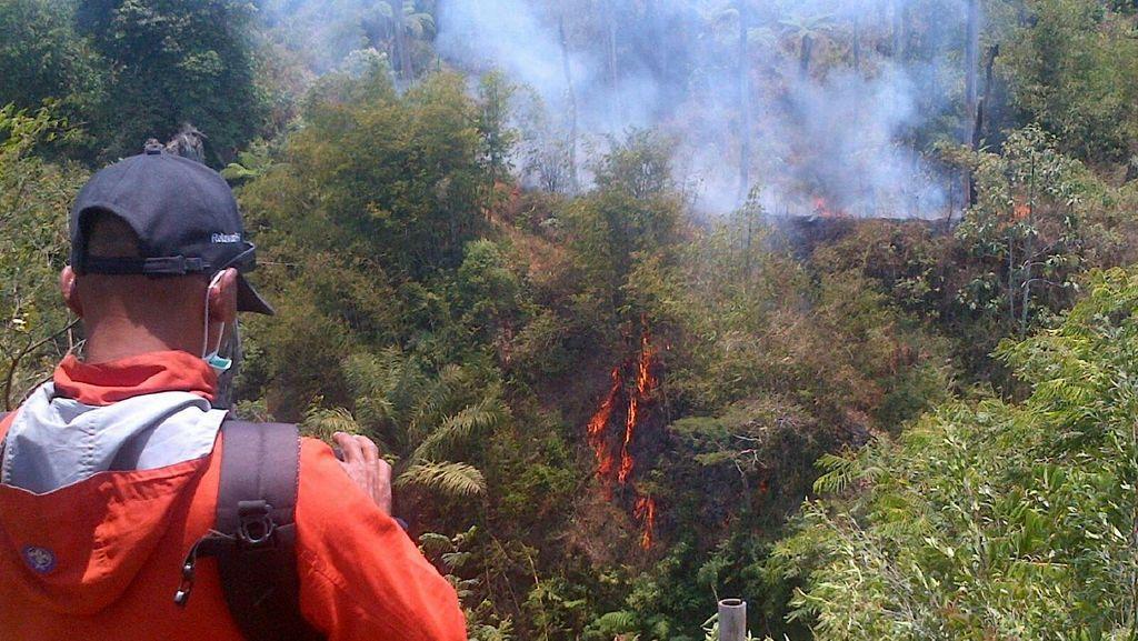 Api Belum Padam, ini Penampakan dari Dekat Kebakaran Hutan Gunung Merapi