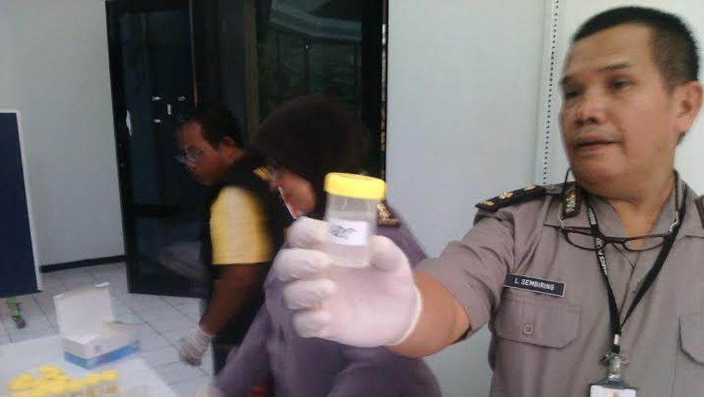Waduh! Wisatawan di Pulau Harapan Dites Urine dan 16 Orang Positif Narkotika