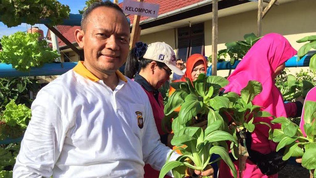 Sukses Kebun Sayur Hidroponik di Polda Kalbar