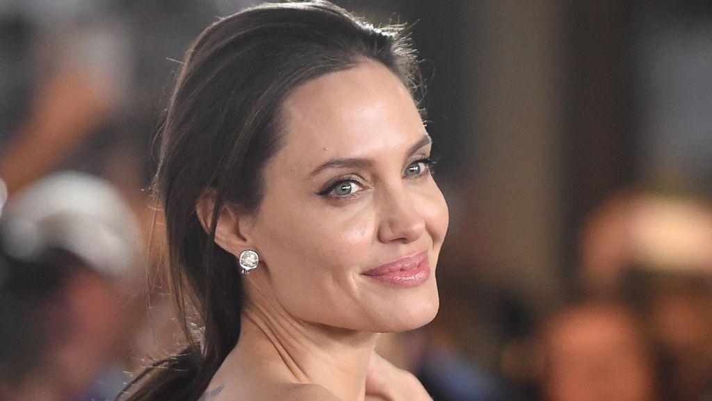 Angelina Jolie Dikritik Lembaga Perlindungan Hewan