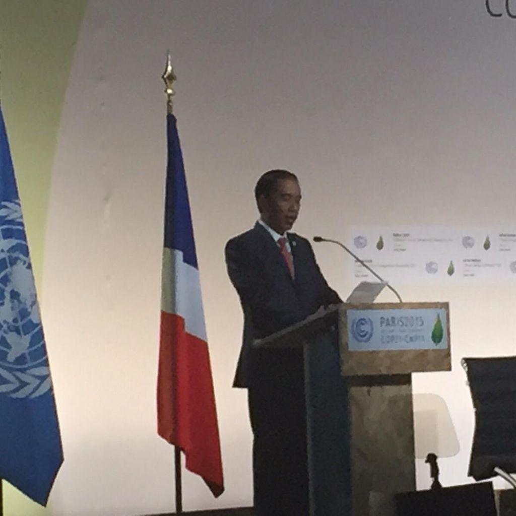 Jokowi: RI Berkomitmen Turunkan Emisi 29 Persen Pada 2030