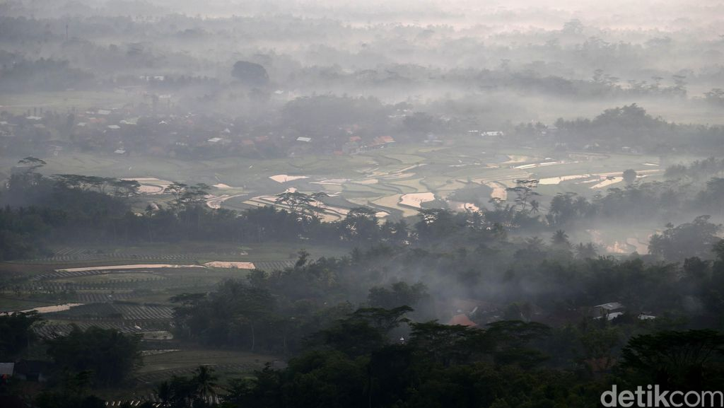 69 Titik Api Kebakaran Lahan yang Muncul di Kaltim dan Riau karena Ulah Oknum