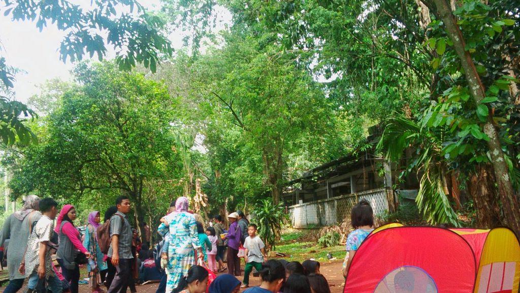 Alasan Pengunjung Tetap ke Ragunan Meski Ramai: Tiketnya Cuma Rp 4 Ribu