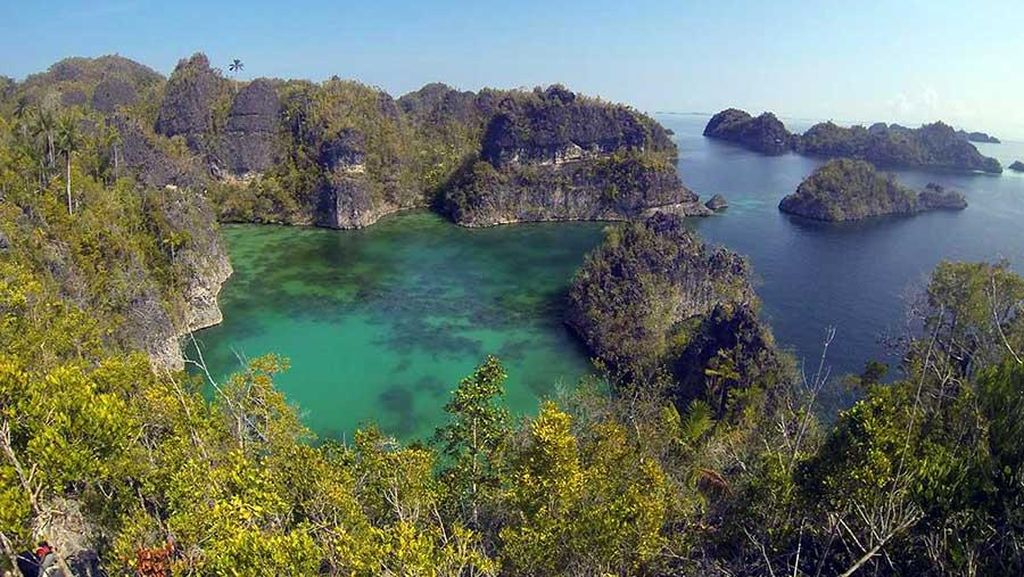 Agar Tetap Aman, Wisatawan di Raja Ampat Harus Didampingi Guide Lokal