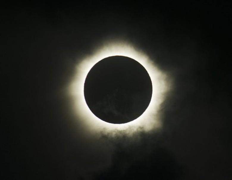 Saat Hewan Malam Tertipu Gerhana Matahari Total