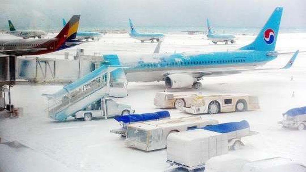 3 Hari Ditutup karena Salju Hebat, Bandara Jeju Korsel Dibuka Kembali
