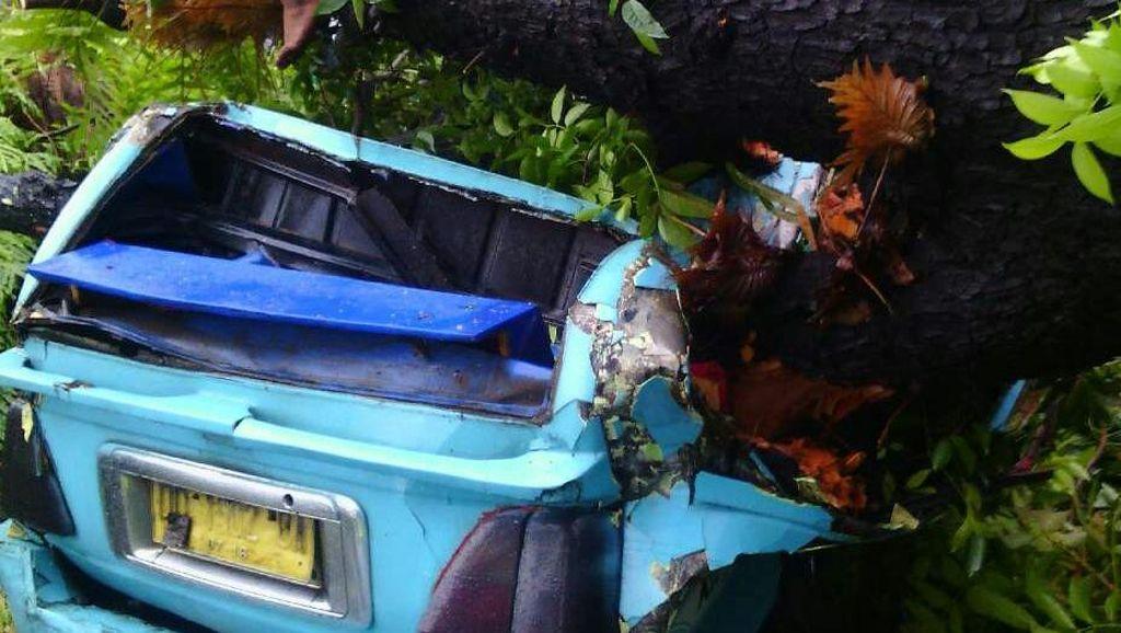 Angkot Tertimpa Pohon di Makassar, Seorang Penumpang Tewas