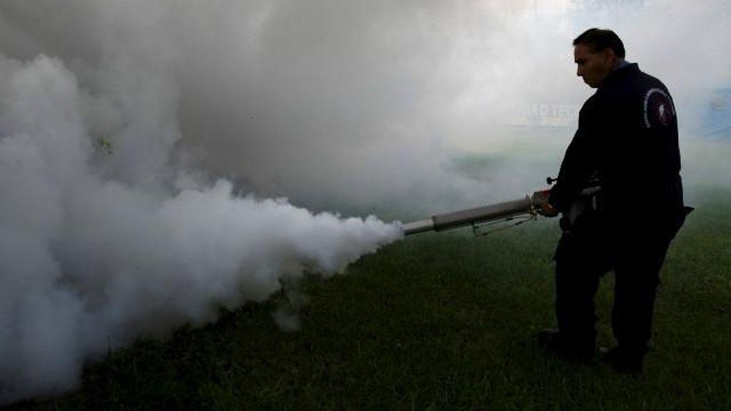 Vaksin Virus Zika Baru akan Ditemukan 10 Tahun Lagi
