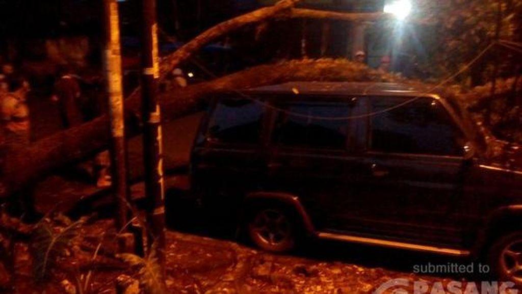 Pohon Tumbang di Radio Dalam, Arus Lalin Arah Pondok Indah Tersendat